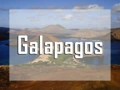 galapagos islands vignette liveaboard diving destination