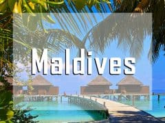 vignette maldives liveaboard diving destination
