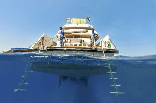 seven7seas seven 7 seas liveaboard red sea scuba diving