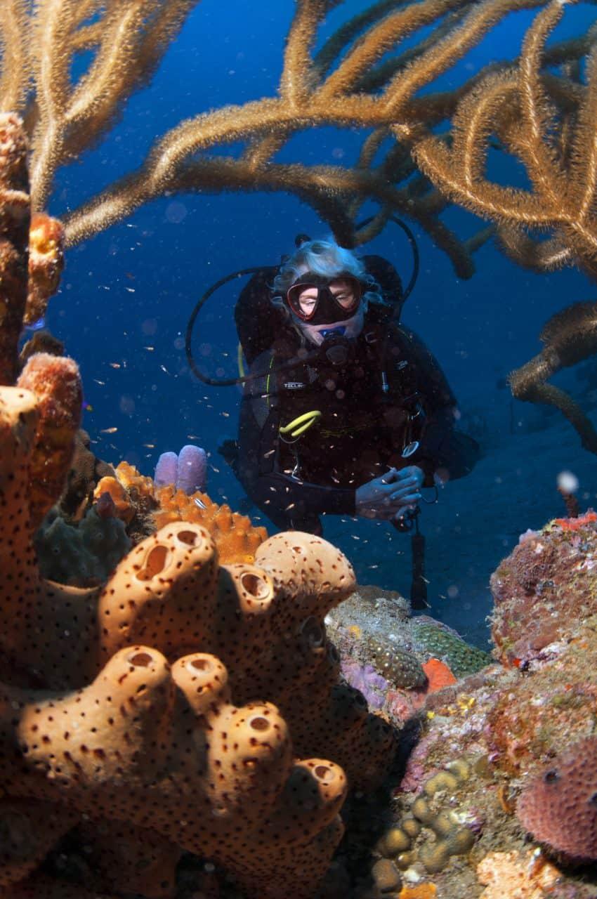 saba scuba diving