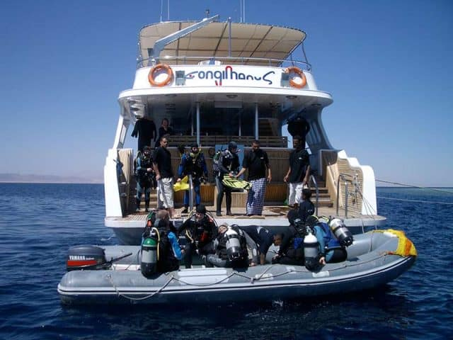 longimanus liveaboard diving red sea