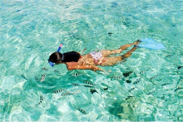 snorkeling km bidadari liveaboard scuba diving indonesia