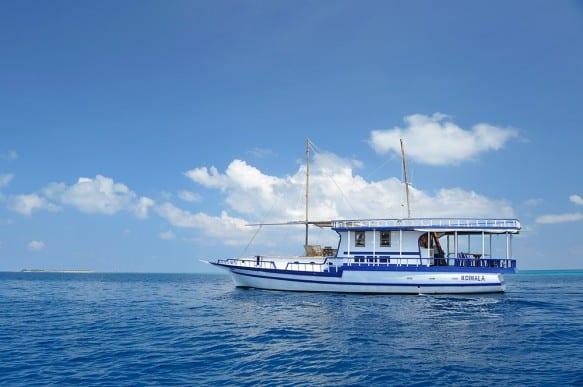 Koimala Liveaboard Review Maldives Dive Boat Reviews