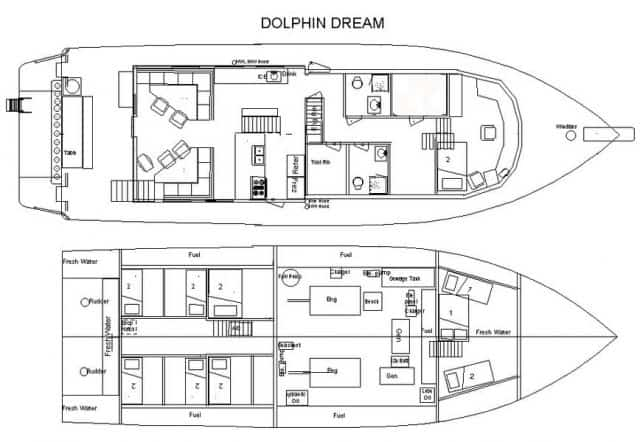 dolphin dream liveaboard charter scuba diving bahamas
