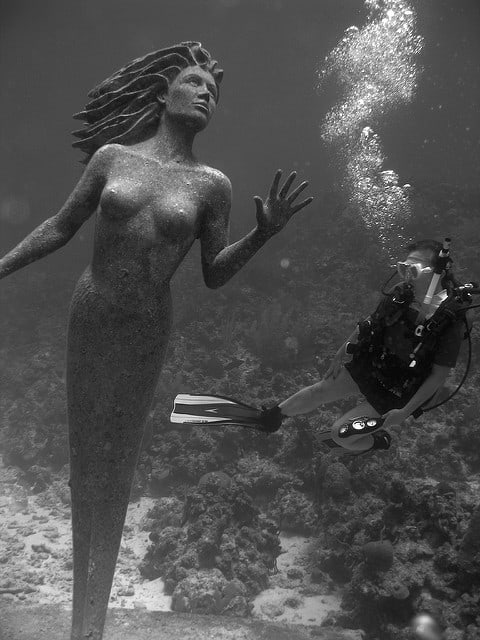 Grand cayman scuba dive mermaid at sunset reef