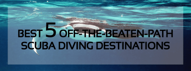 best diving destinations world