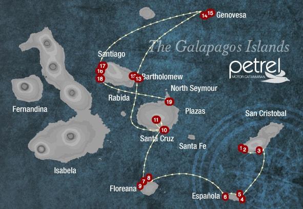 Petrel Cruise Ship Review – Galapagos, Cruise Ship Reviews