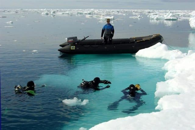 plancius small ship cruise diving arctic polar region