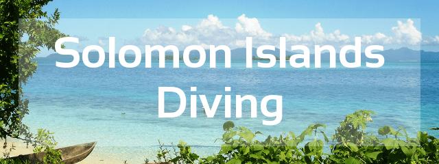 solomon islands diving destination