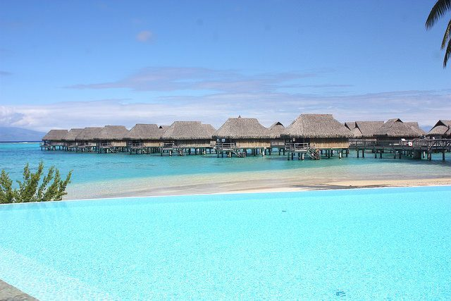 french polynesia diving review
