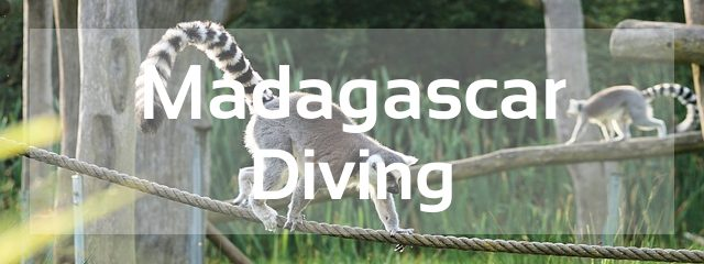madagascar scuba diving destination