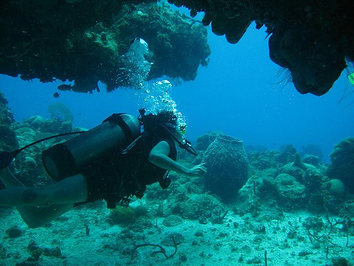 Diving the Arches, Negril by Drew Domkus