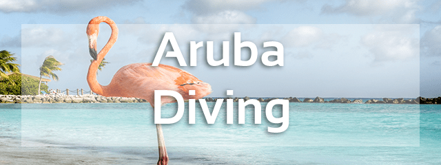 aruba diving review