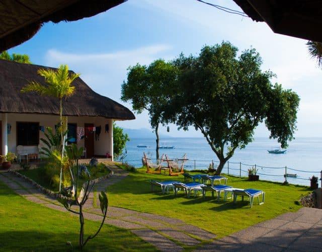quo vadis dive resort moalboal philippines